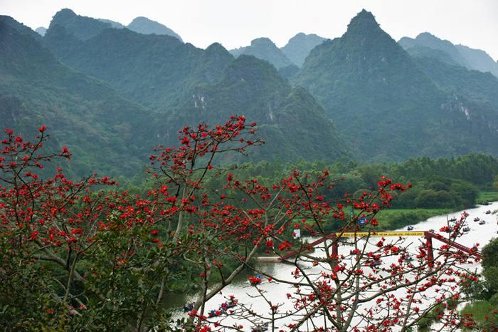 Hoa Gao Chua Huong