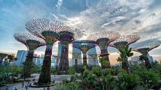 Khám phá khu Vườn hoa mái vòm và Rừng mây kỳ thú tại Gardens by the Bay Singapore