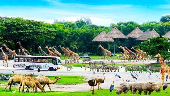 Điểm bán véSanfari WorldBangkok giá rẻ tại Việt Nam